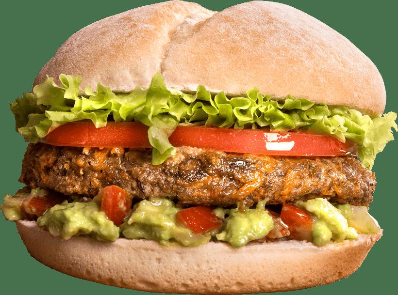 Veggie Burger Andina